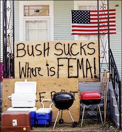 Bushfemasuck